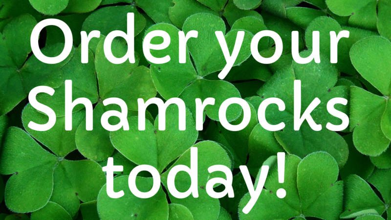 Order your shamrocks today