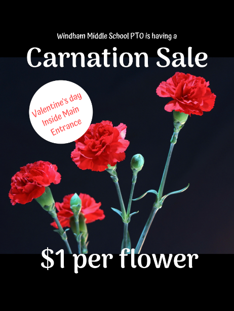 PTO Carnation Sale.PNG