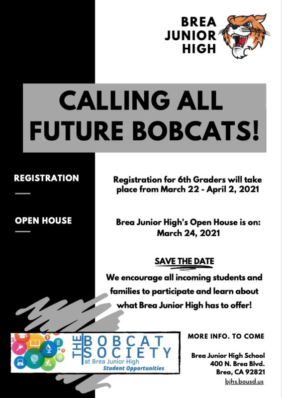 Bobcat Flyer
