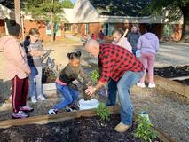 Dupont Garden Project