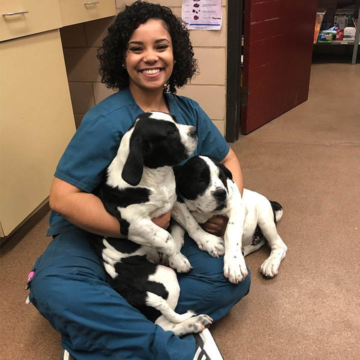 Cristo Rey Alumna Builds Career at Animal Humane Society Thumbnail Image