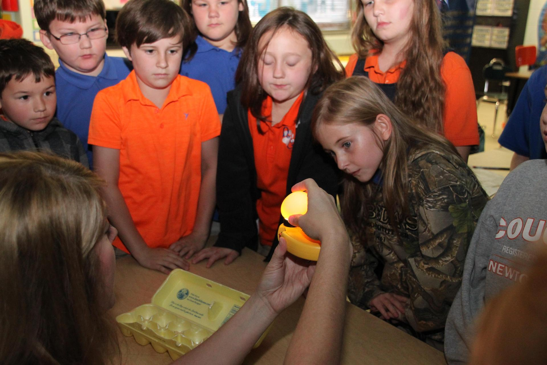 Demonstration of an egg hatching with Students