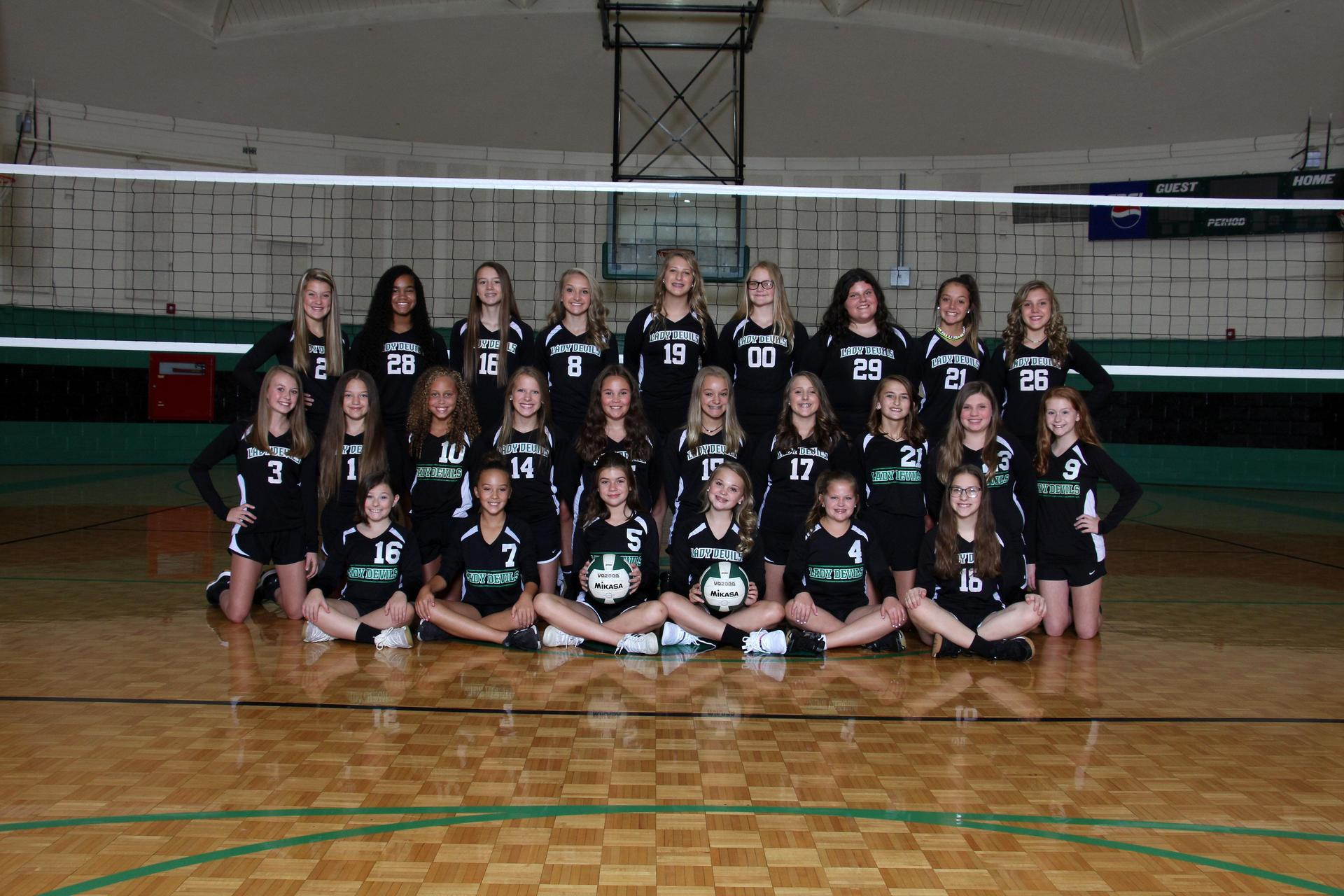 2019-2020 GMS Volleyball