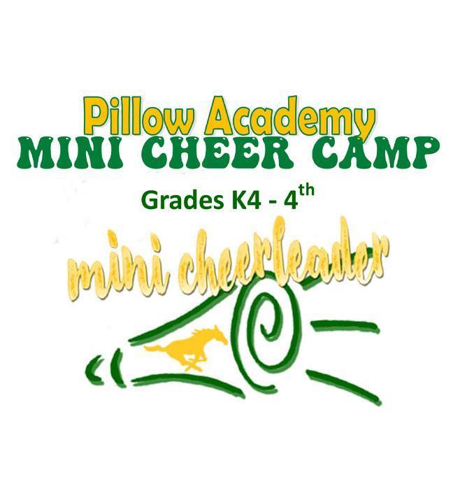 Mini Cheer Camp Featured Photo