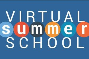 2020 6 Virtual Summer School.jpeg