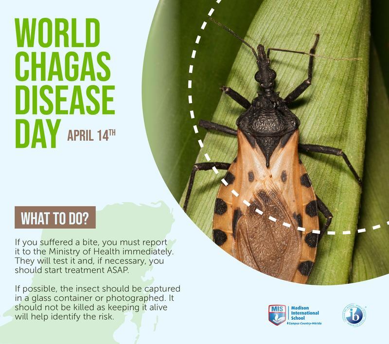 Día Mundial de la Enfermedad de Chagas Featured Photo