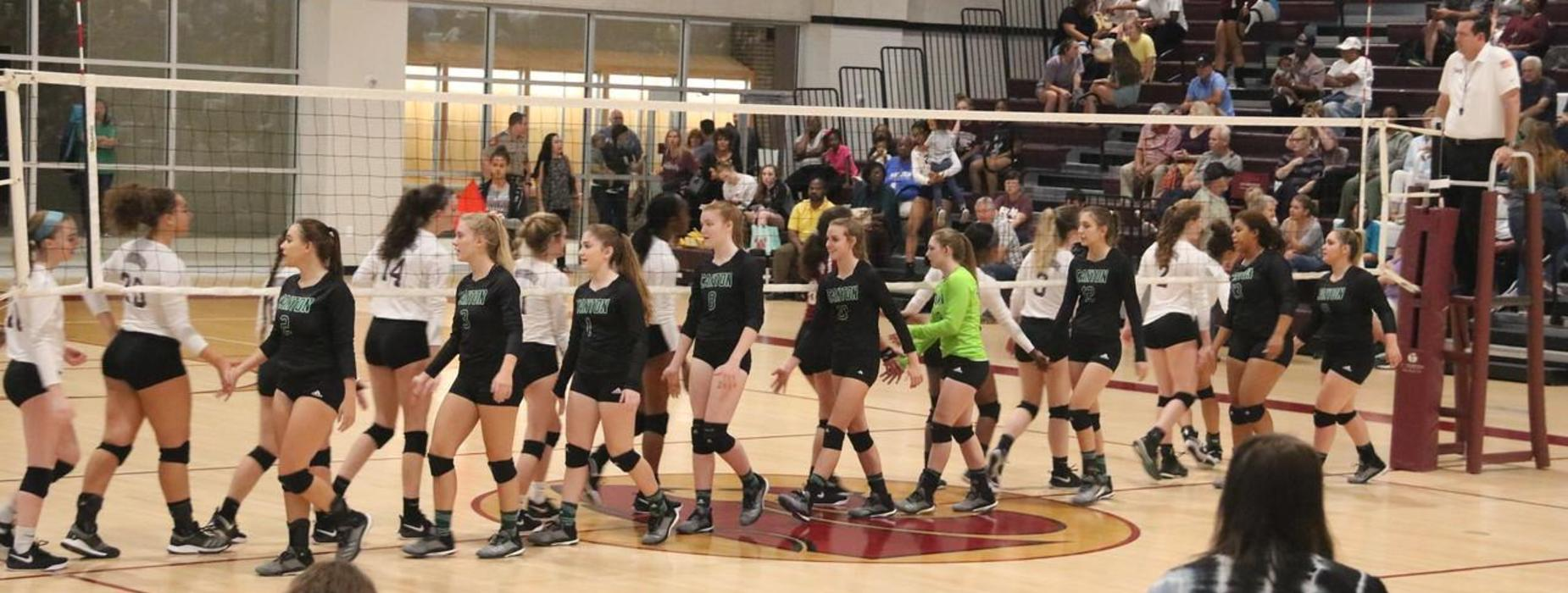 2018-19 Volleyball Game
