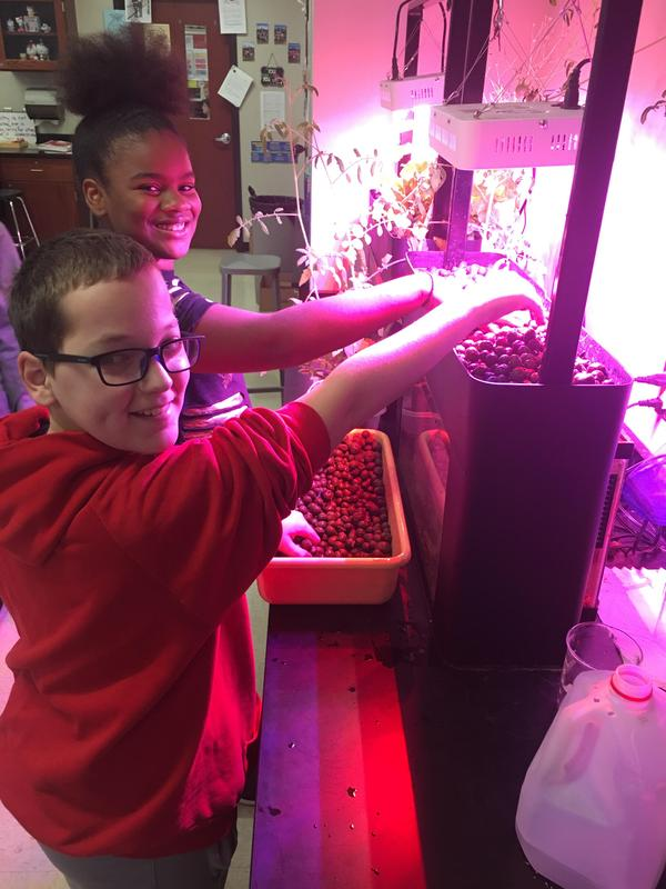 Students Preparing Aquaponics Thumbnail Image