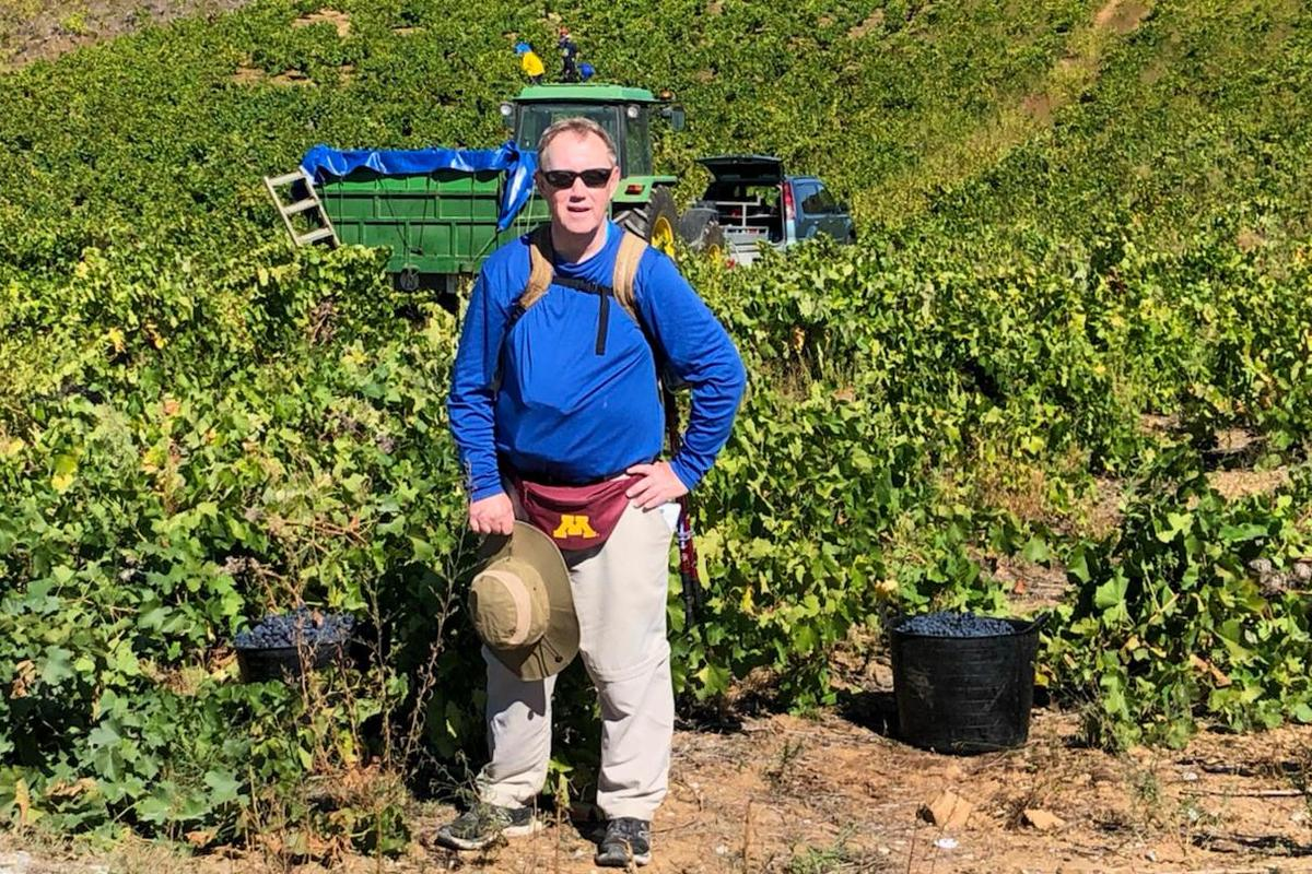 frtw vineyard