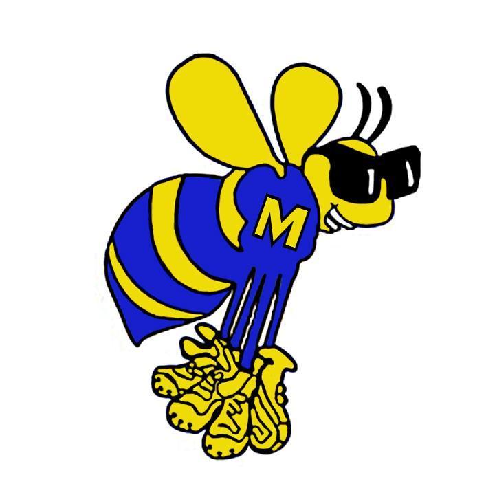 School mascot illustration