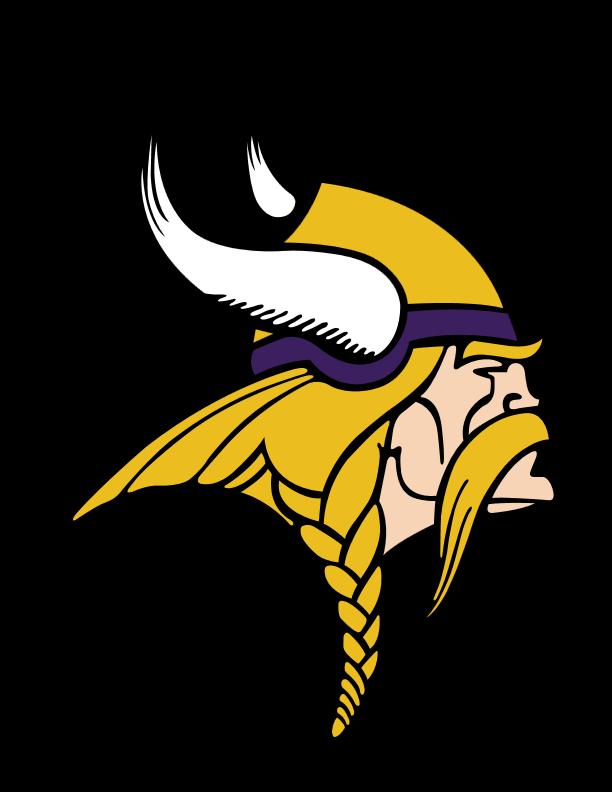 TSD Viking Logo