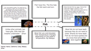 Fish animal group facts