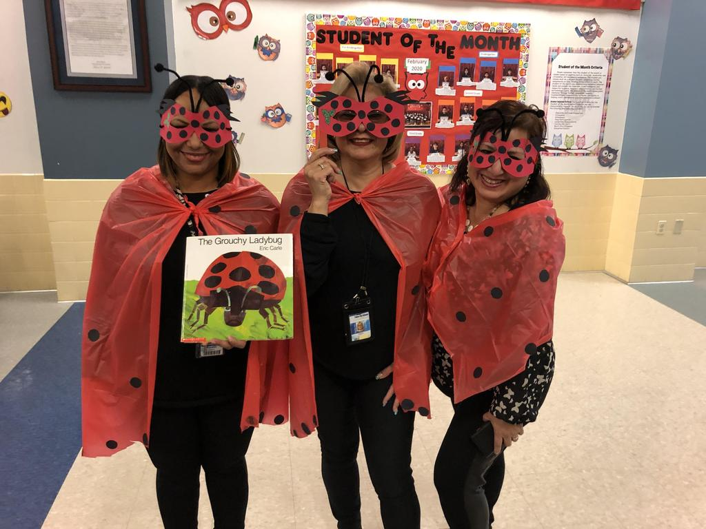 group lady bugs group of aid