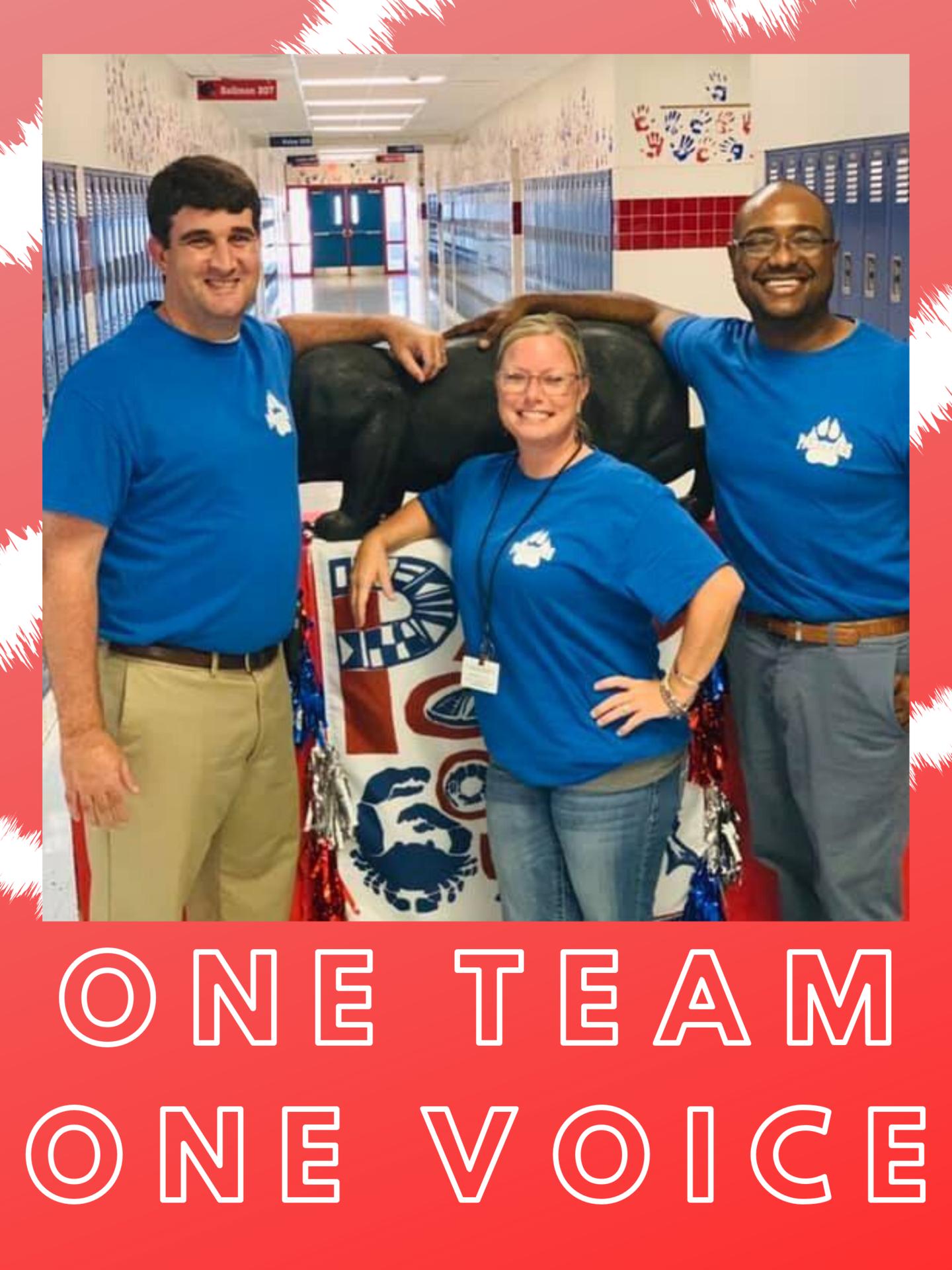 one team one voice
