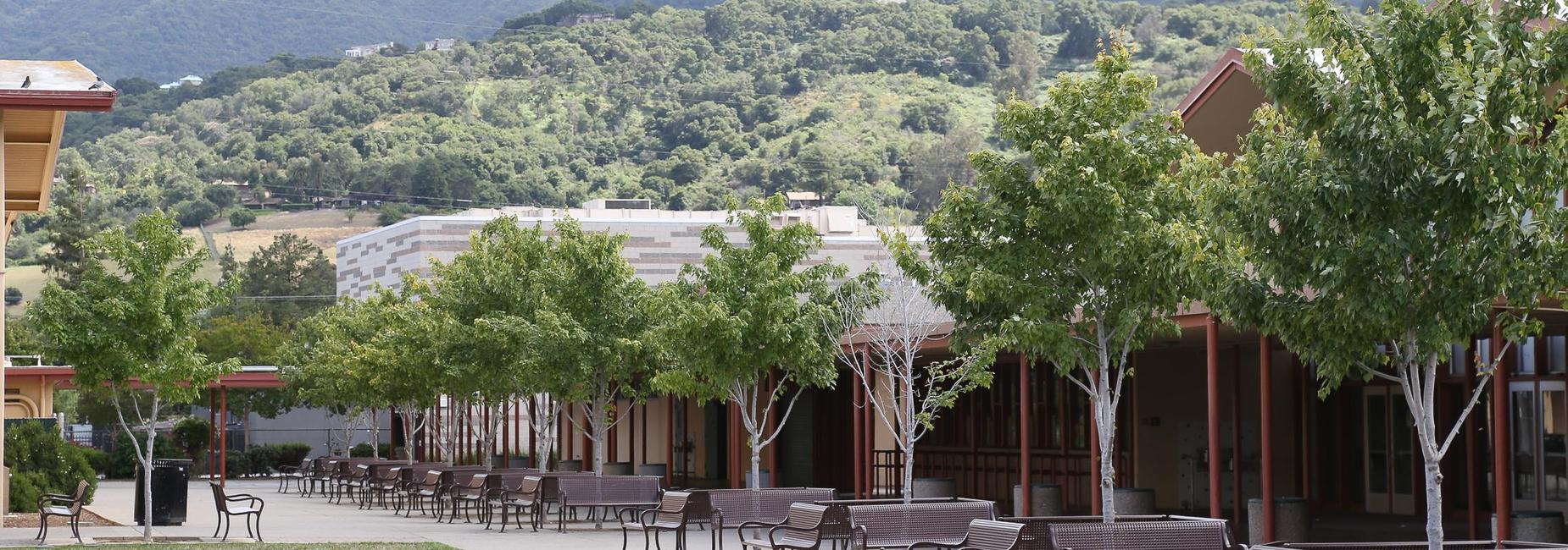 Cafeteria, PAC, and the hillside