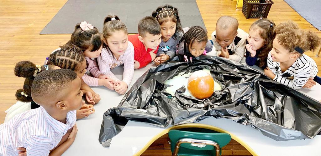A group of young students seated around a pumpkin STEM experiment