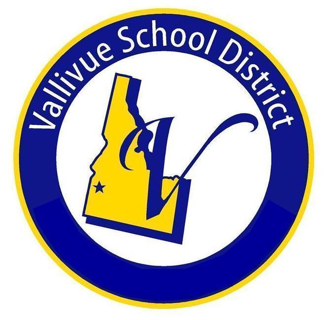 vsd logo