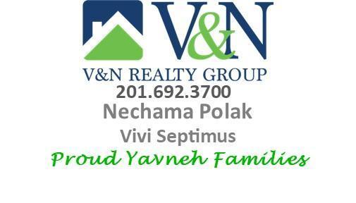 V & N Logo