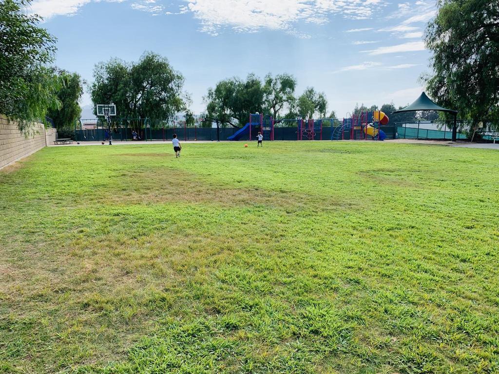 Large Play yard