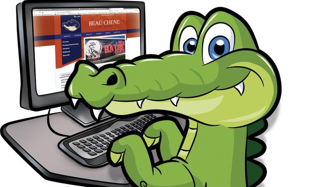 gator checking out the BC website