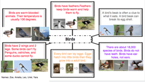 Birds animal group facts