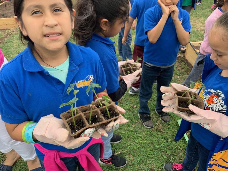 Garden program at North Thumbnail Image