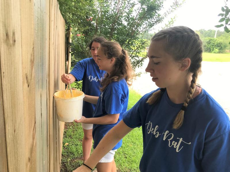 Debs Volunteering at SEMS