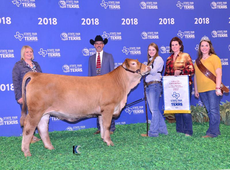 Grand Champion Texas State Fair