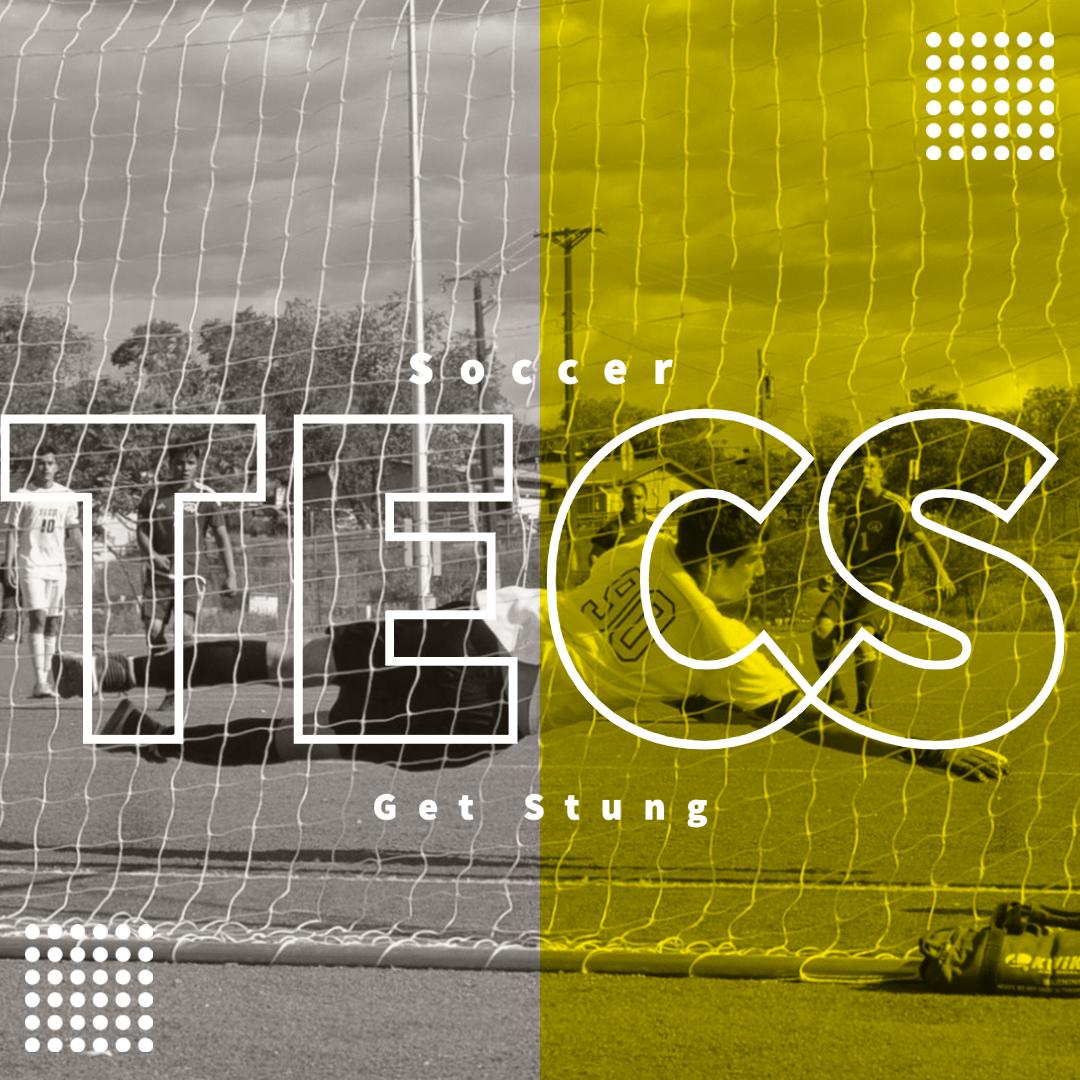 TECS Varsity Soccer