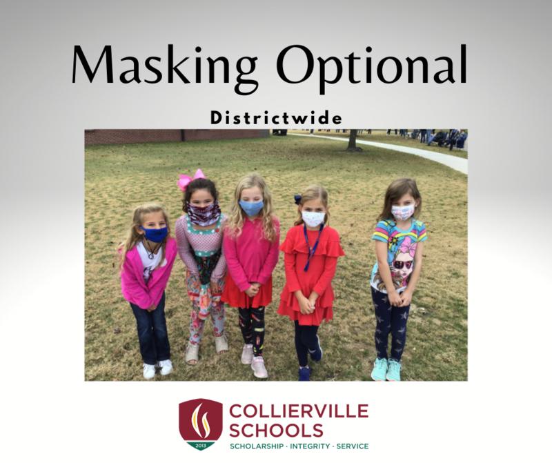 Masking Optional