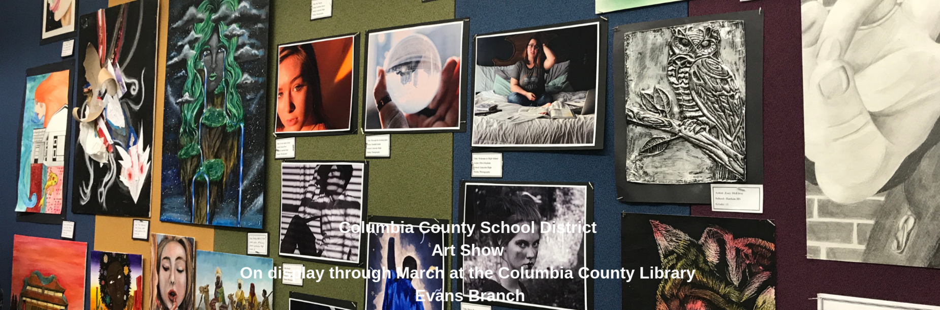 Art work on display at the Columbia County Library Evans branch for the annual art show