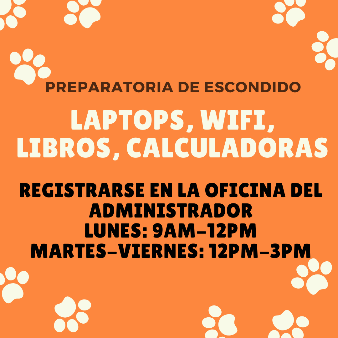 computer graphic spanish