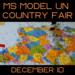 Model UN Country Fair
