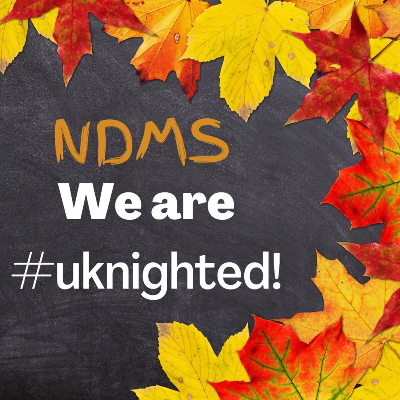 NDMS we are #uknighted