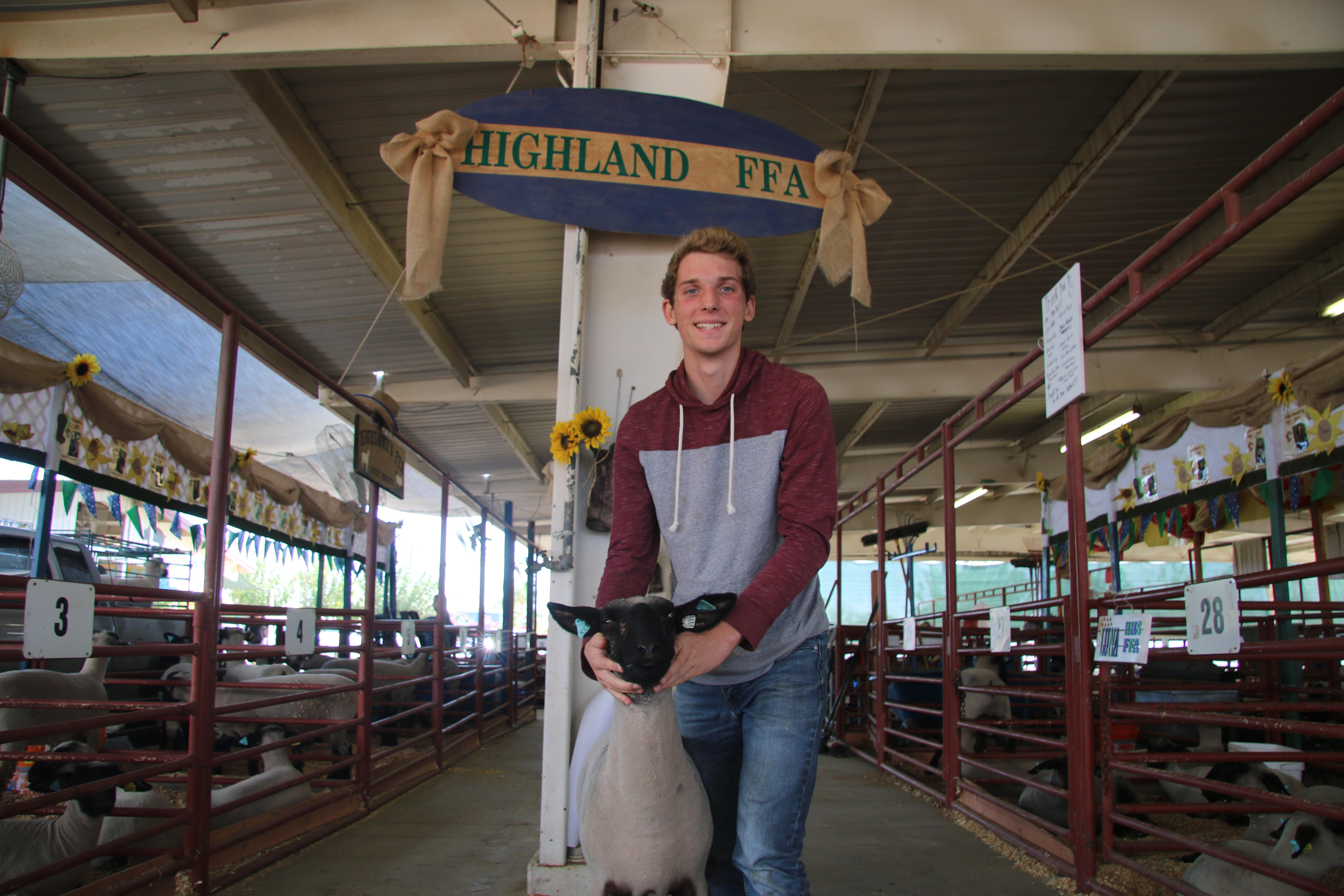 Jacob, with HHS FFA lamb project