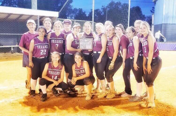 Softball Team 2nd in District