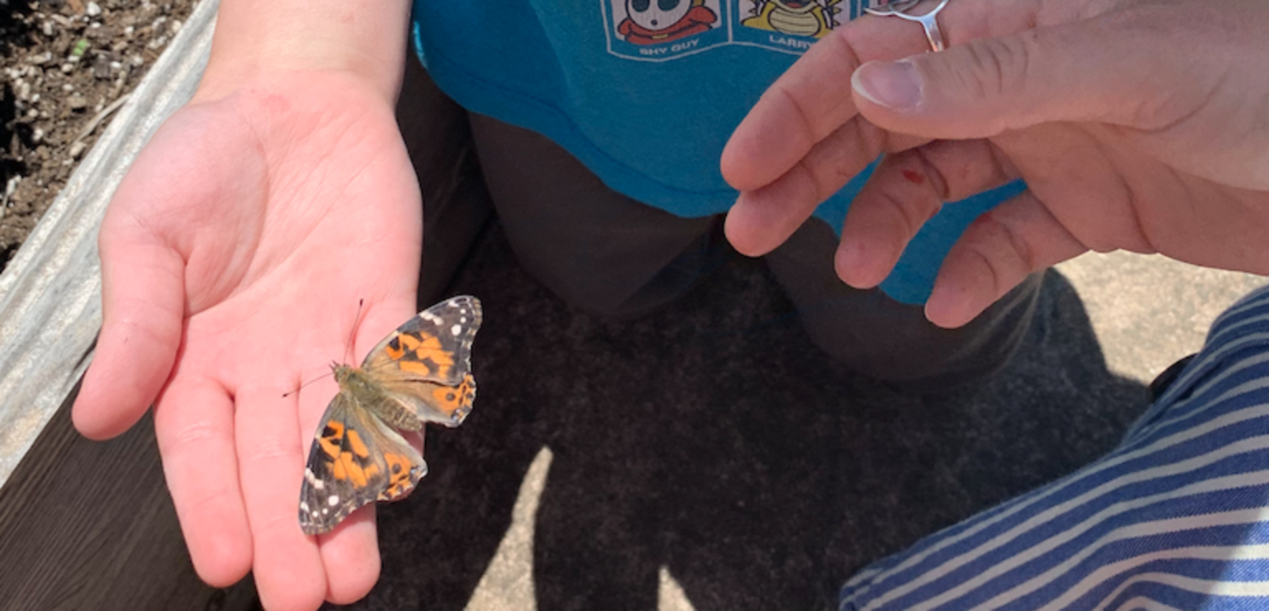 Student with butterfly