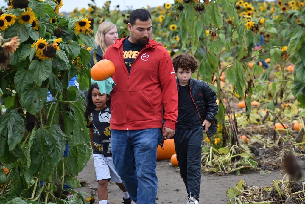 boys looking for pumpkins
