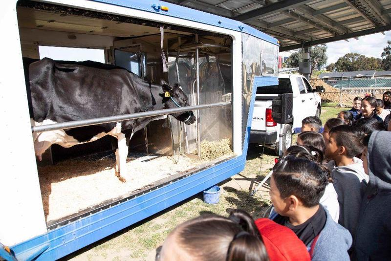 mobile dairy at felton