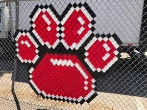 Cougar paw print