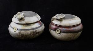 Hailey Snell-Campbell: Raku Flowered Pots