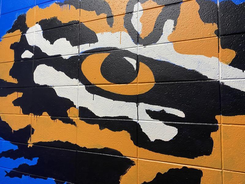 SEHS Tiger Eye Wall Art