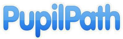 Pupilpath logo in blue