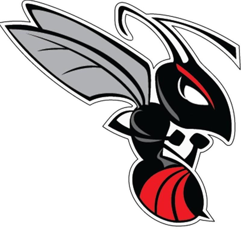 Heyworth Hornet