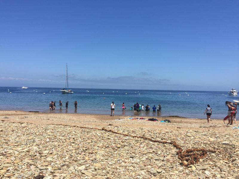 Catalina Island ~ Day 2 Thumbnail Image