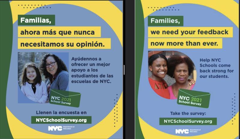 ***NYC SCHOOLS SURVEY*** Featured Photo