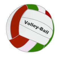 a picture of a volleyball