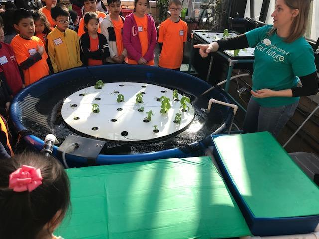 students gathered around hydroponic table