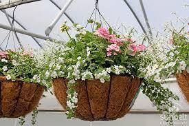 Spring Flower Fundraiser Thumbnail Image