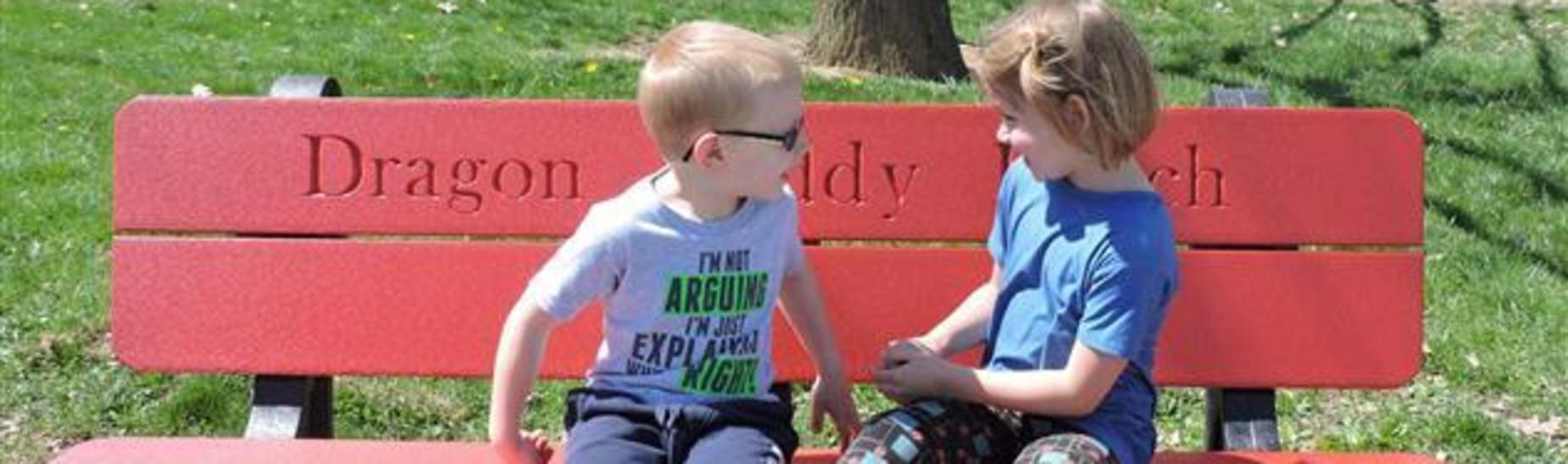 Spring Cove Elementary Buddy Bench